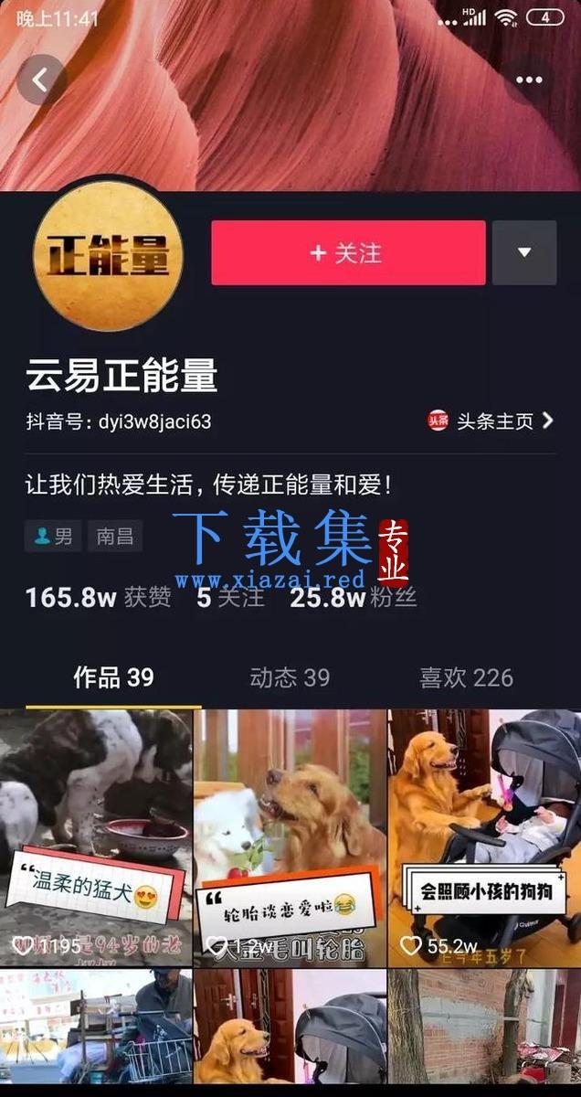 王通:如何用短视频积累百万粉丝?短视频引流聚粉,创千万收入 第6张