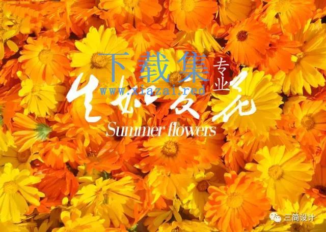 【私藏字体】-生如夏花书法中文字体
