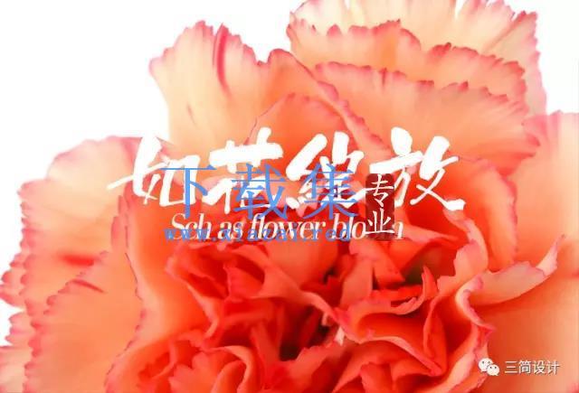 【精选字体】-如花绽放书法毛笔字体复古文艺
