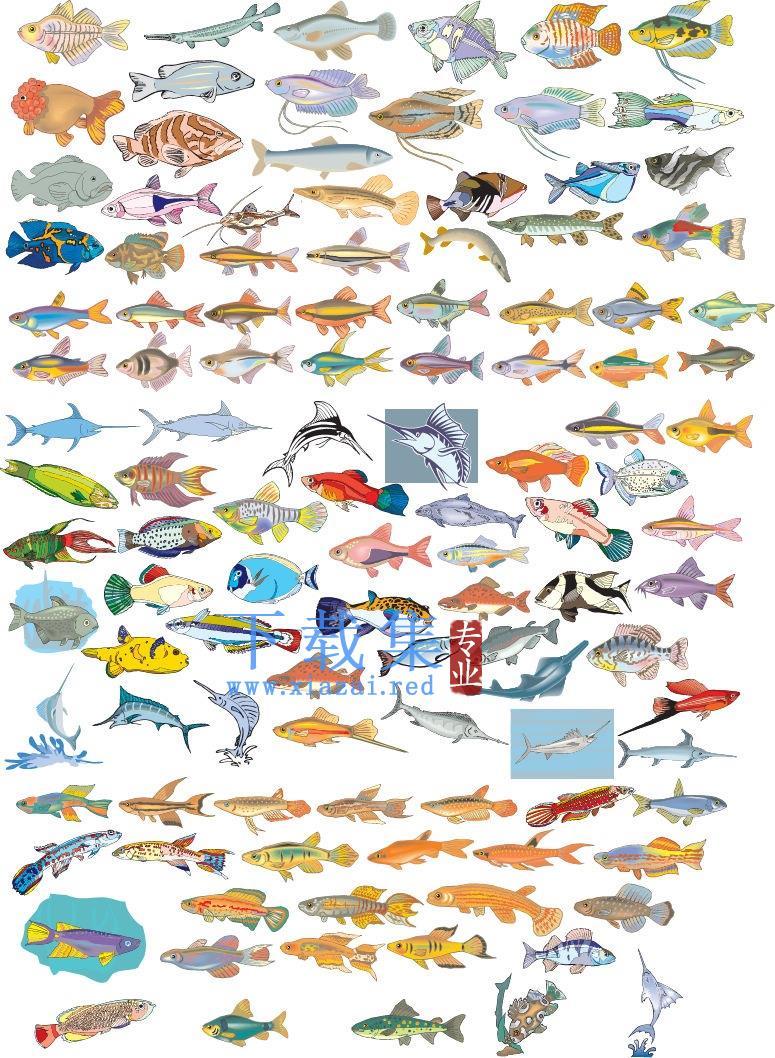 上百种漂亮的海底鱼矢量素材