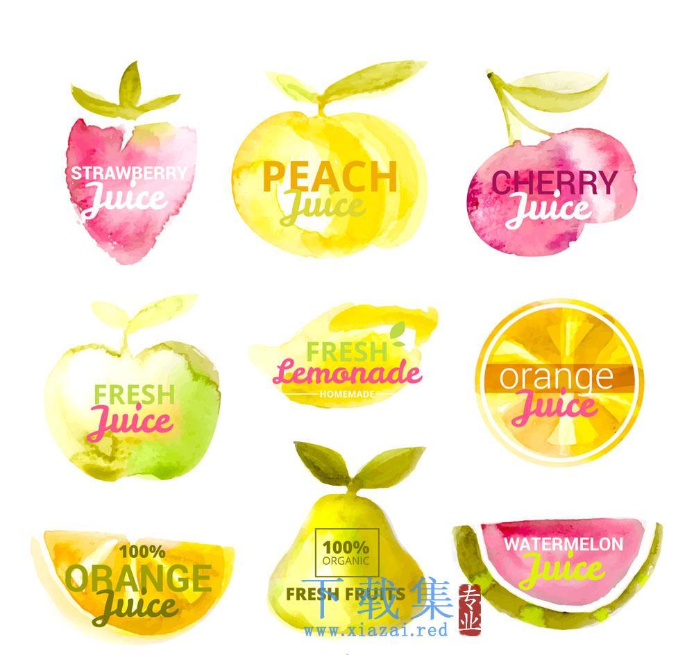 9个水彩画水果果汁矢量标签