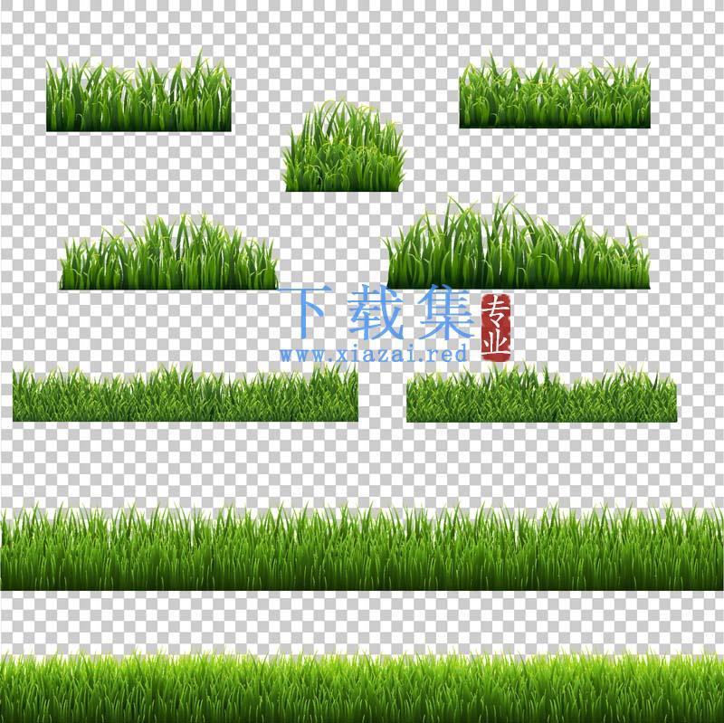 绿色小草花边素材