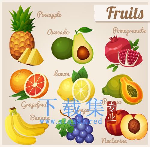 9款切片的水果EPS矢量图标  第1张