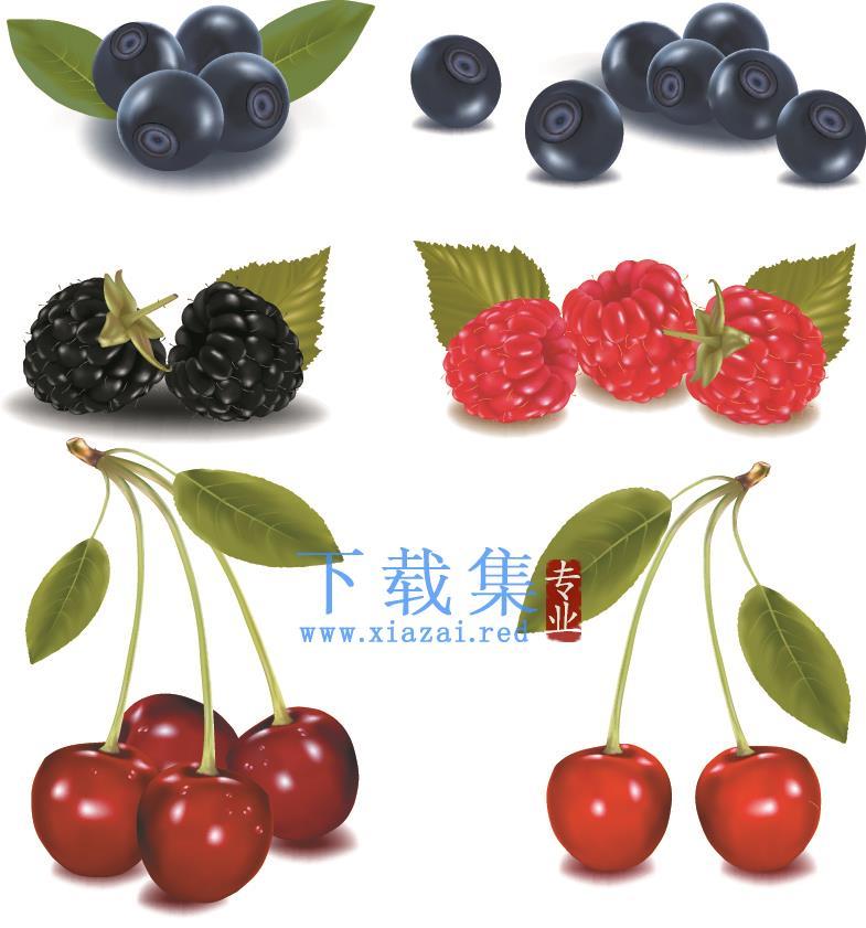 新鲜水果矢量素材  第2张