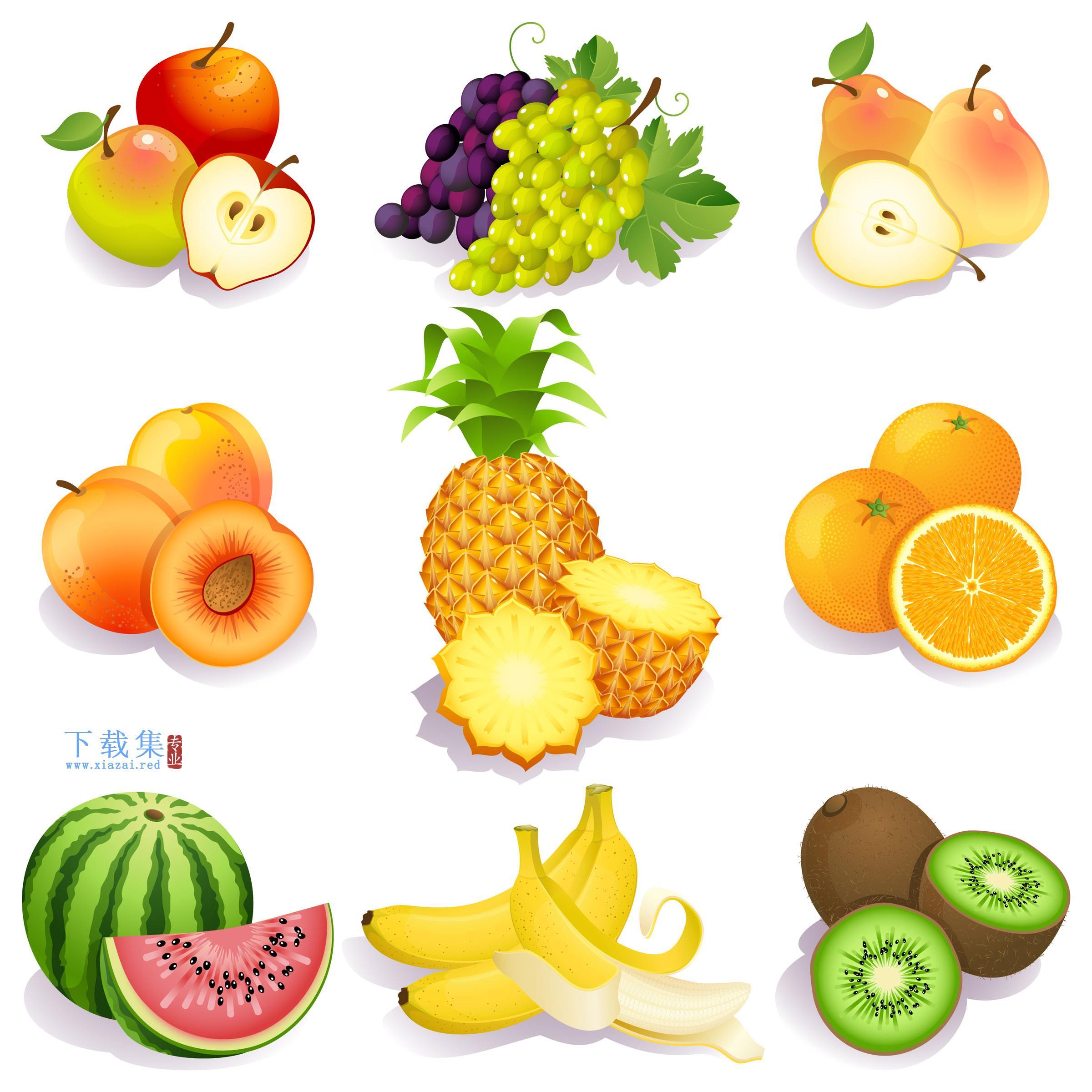 免费夏季新鲜水果矢量素材