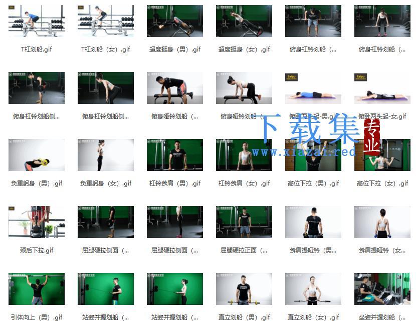 初级健身动作训练图集  第2张