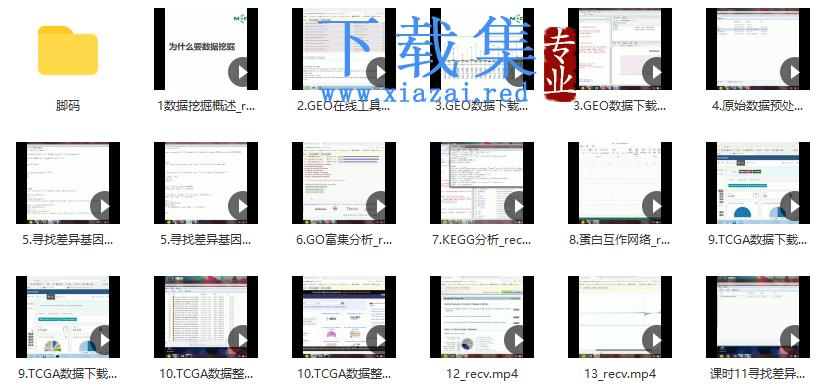 GEO数据分析系列视频课程
