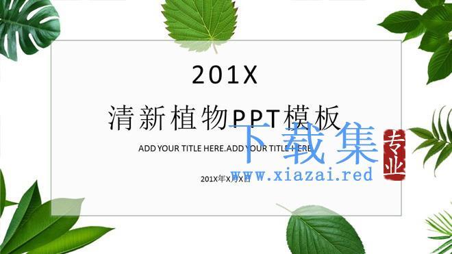 清新绿色植物叶子背景PPT模板免费下载