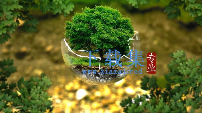 绿树PPT背景图片  第1张
