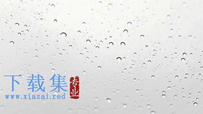四张水珠露珠PPT背景图片