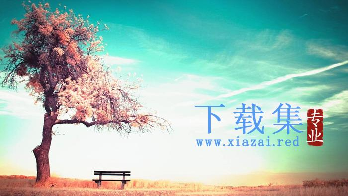 户外大树草原PPT背景图片