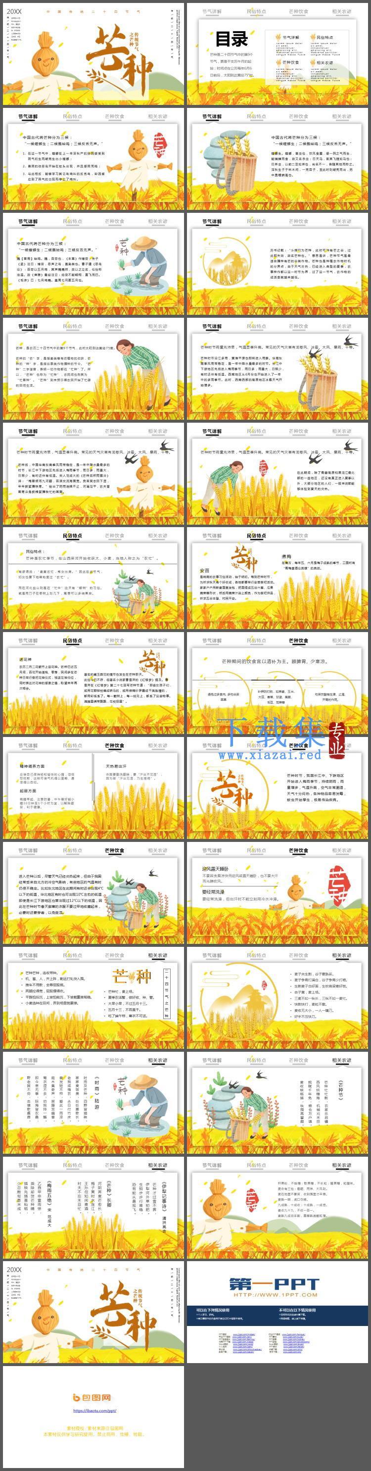 麦田与稻草人背景的芒种节气介绍PPT模板  第2张