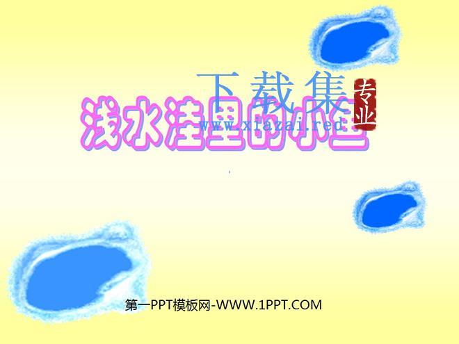 《浅水洼里的小鱼》PPT教学课件下载5  第1张
