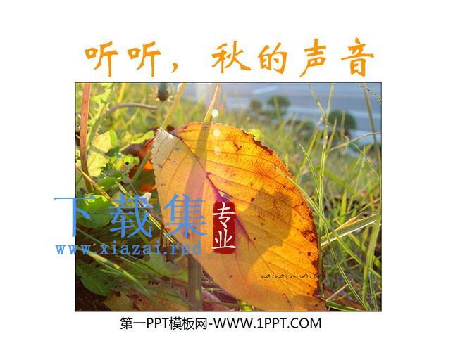 《听听,秋的声音》PPT教学课件下载5