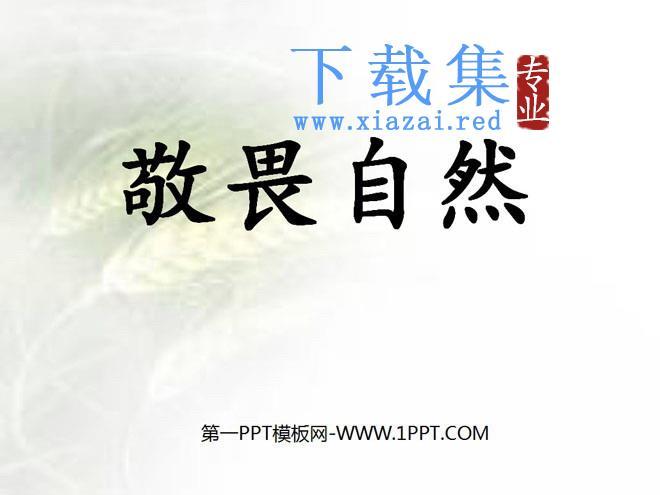《敬畏自然》PPT课件5