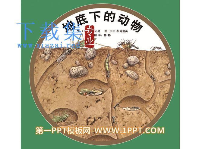 《地底下的动物》绘本故事PPT  第1张