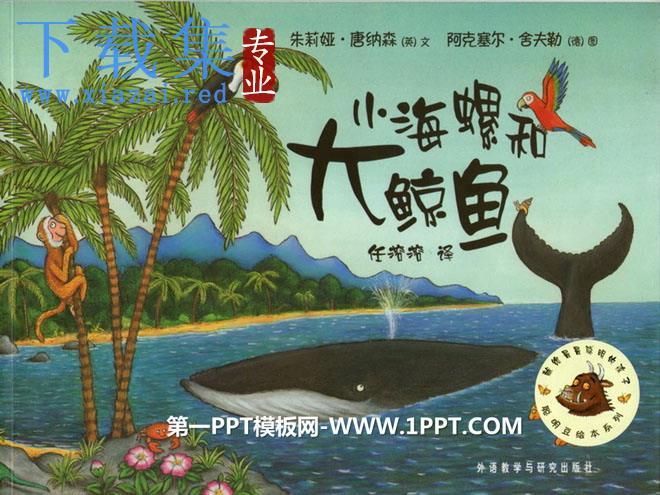 《小海螺和大鲸鱼》绘本故事PPT  第1张