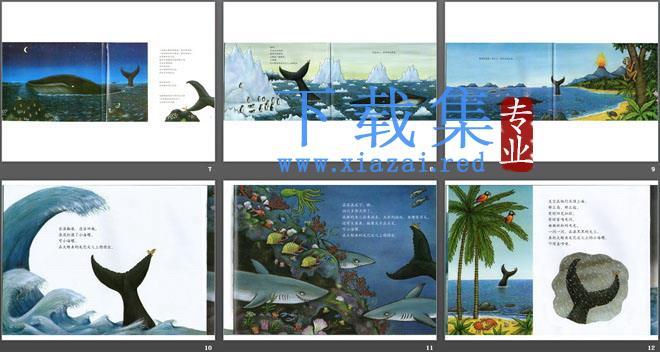 《小海螺和大鲸鱼》绘本故事PPT  第3张